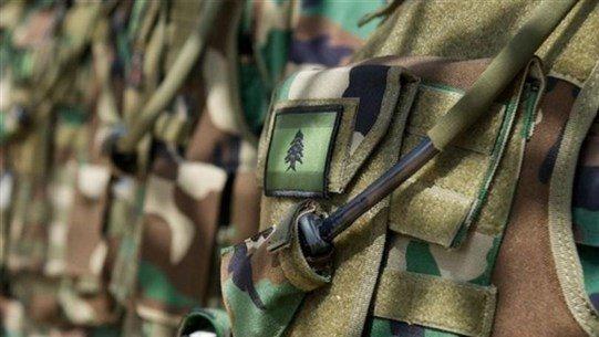 الجيش: إستهداف مدفعية العدو منطقة وادي حامول الجنوب