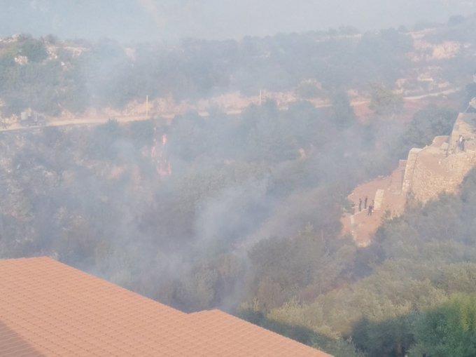 النيران مازالت مشتعلة في احراج القبيات ووادي عودين وصولا الى كفرتون